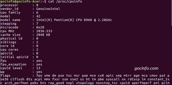 Lệnh xem thông tin cấu hình máy tính trong Linux - Ubuntu