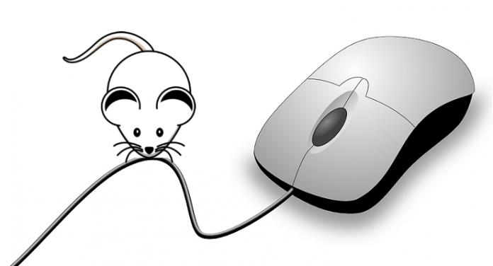 Chọn mua chuột máy tính